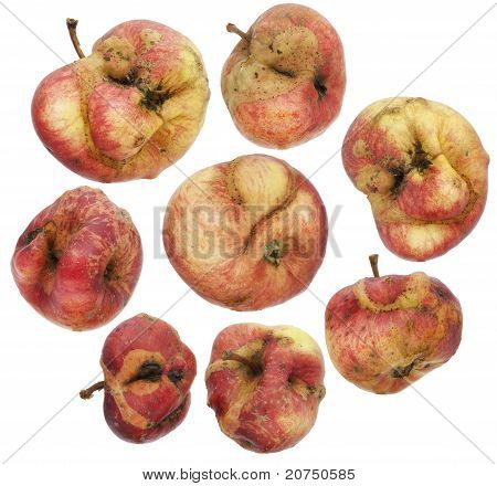 Set Of Curve, Ugly, Sick ,unhealthy Apples