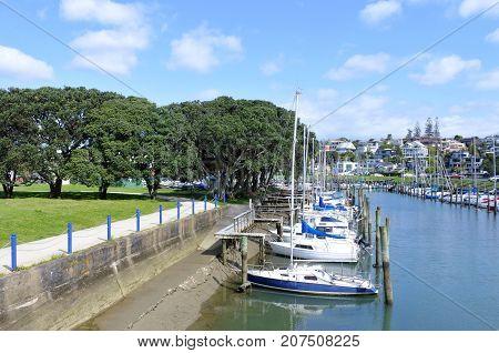 Sail Boats Mooring In Wairau Creek In Milford Auckland