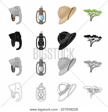 Elephant, animal, wild, and other  icon in cartoon style.Safari, Africa, tourism icons in set collection