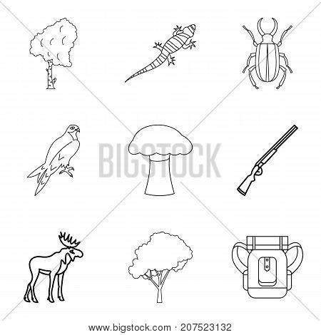 Explore the animal world icons set. Outline set of 9 explore the animal world vector icons for web isolated on white background