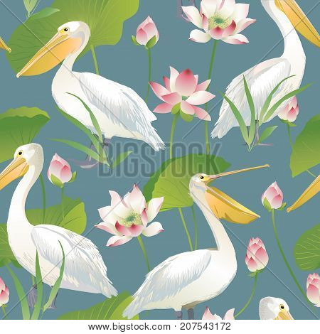 Vector seamless pattern pelican and lotus flowers and leaves. Watercolor.