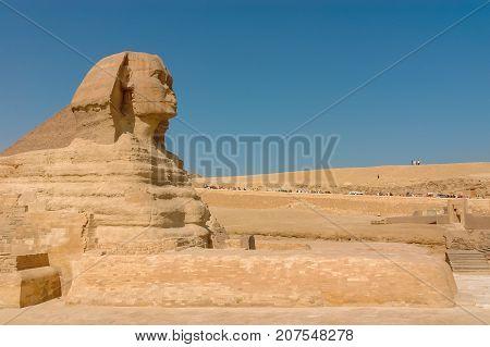 Profile Sphinx. Egyptian Sphinx. Giza. Cairo. Desert