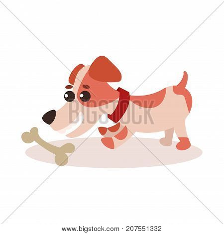 Jack russell terrier character playing with bone, cute funny dog vector Illustration on a white background