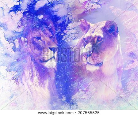 Lion couple - lion and lioness, on abstract structured background. marble effect