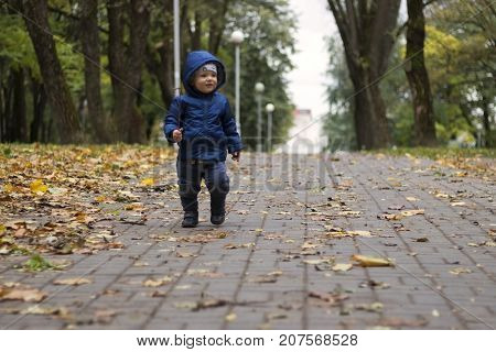 Baby's First Steps. The First Independent Steps. Toddler On The Walk In The Autumn Park