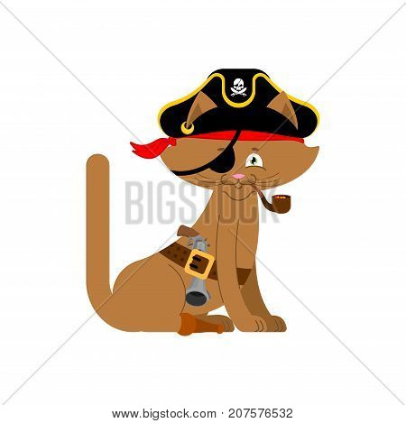 Cat pirate. Home pet buccaneer. filibuster hat and smoking pipe. wooden leg. Vector illustration. poster