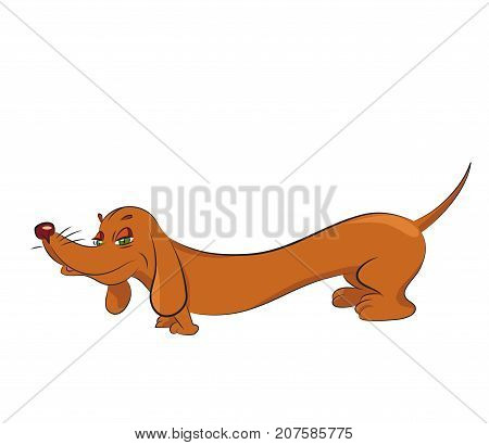 Tricky dachshund cartoon image. Artistic freehand drawing. Authentic cartoon.