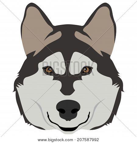 Dog Face Icon