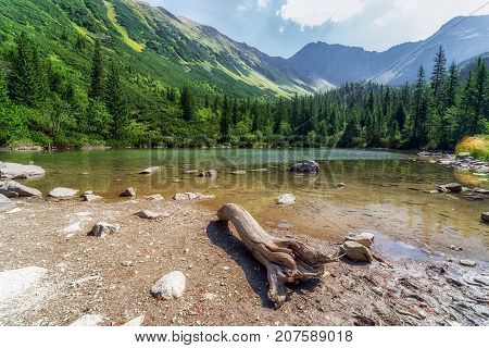 Tatliakovo lake in West Tatras mountains Slovakia. Beautiful forest landscape