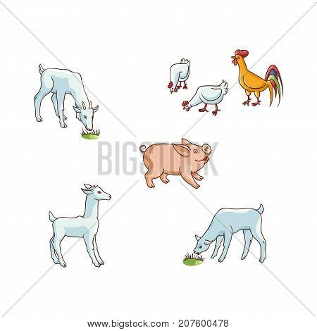 Set of cute hand drawn farm animals - chicken, pig, goat and lamb, flat cartoon vector illustration isolated on white background. Funny cartoon chicken, hen and rooster, pig, lamb and goat farm animals