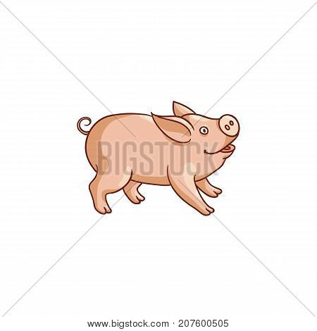 Cute hand drawn baby pig, side view flat cartoon vector illustration isolated on white background. Cute little pig standing on four legs, farm animal, vector illustration