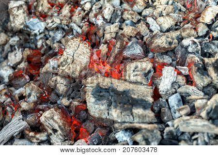 Smoldering coals for shish kebab. Burning coals.