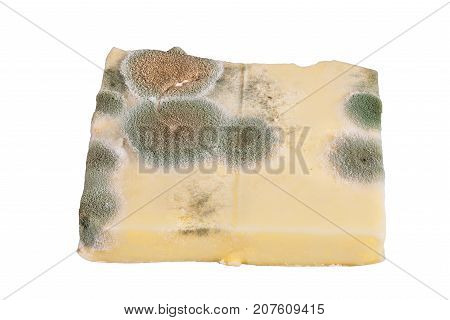 Slice of moldy cheese isolated on white background.