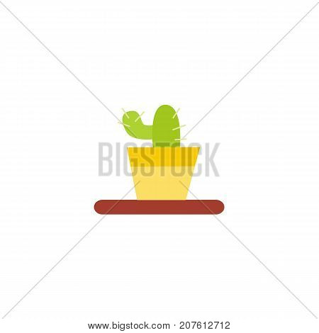 Flat style cactus in the pot, home interior, decoration object, vector illustration isolated on white background. Flat style cactus icon, houseplant in pot