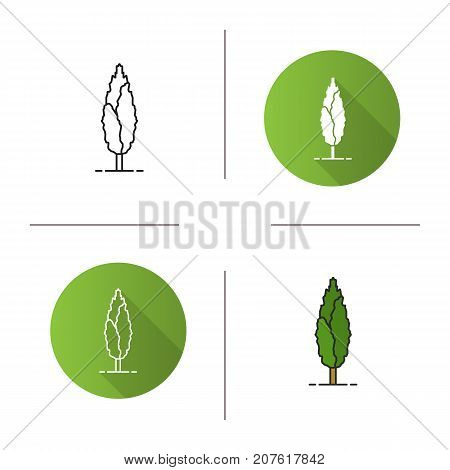 Poplar tree icon. Flat design, linear and color styles. Isolated vector illustrations