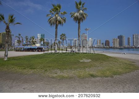 Iquique, Chile - August 28, 2017:  Cavancha Beach in the coastal city of Iquique in the Tarapaca Region of northern Chile.
