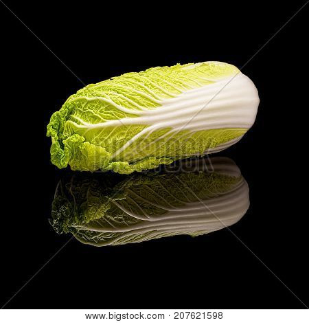 Head of lying chinese Peking cabbage. On a black glossy background with real reflection.