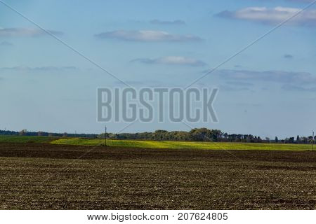 Arable land and contrast yellow field. Rural autumn landscape.