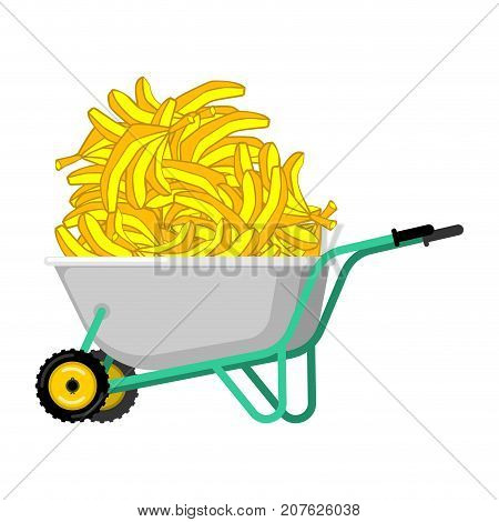 Wheelbarrow And Banana. Fruit In Garden Trolley. Big Harvest Vector Illustration