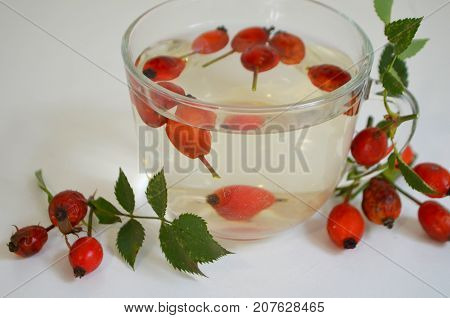 Decoction with dog rose in a cup Rosehip
