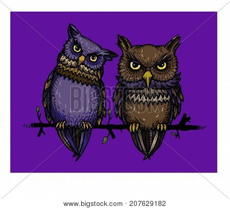 Cute owls freehand picture. Artistic drawing. Authentic cartoon.