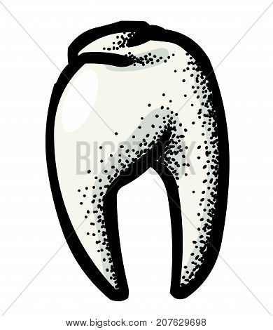 Tooth freehand picture. Artistic drawing. Authentic cartoon.