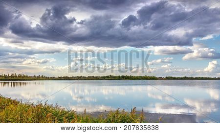 evening summer landscape with lush pine tree on the banks of river.