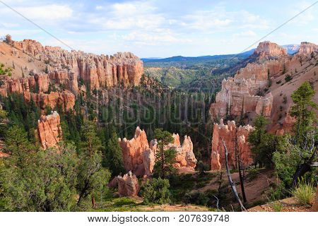 Panorama from Bryce Canyon National Park USA. Hoodoos geological formations. Beautiful scenery