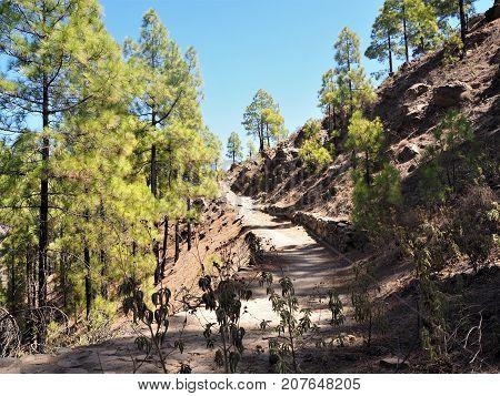 Footpath between San Bartolome and Cruz Grande, Gran Canaria