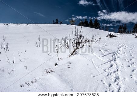 Barania Gora hill with snow and view tower in Silesian Beskids mountains near Wisla resort during winter day with blue sky and few clouds