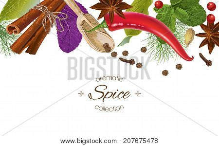Vector spice horizontal border with various seasonings on white background. Red chili peppers, bay leaves, cinnamon and other spices. Design for packaging, spice shop, recipe web site, cooking book