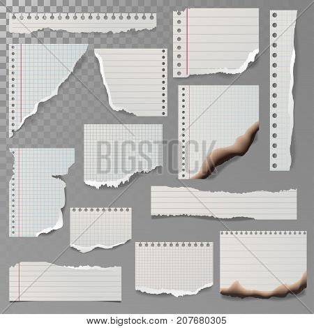 Pieces of torn white lined notebook paper square line rag white and burned page vector illustration. Lacerated ragged notice list reminder notepaper.