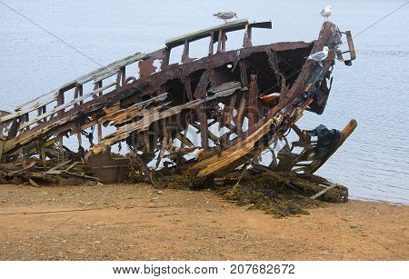 А broken ship on the shore of the Barents Sea