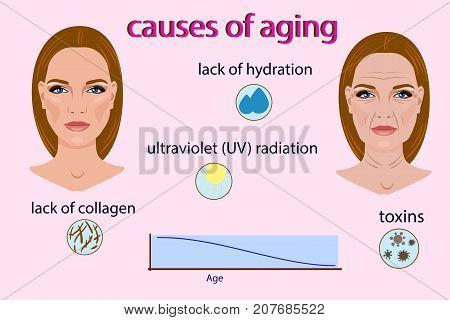 Causes of aging, vector illustration with two faces and small pictures isolated on the light background for beauty and medical pictures