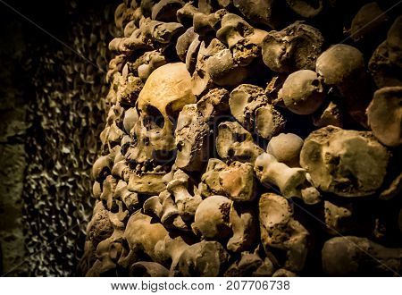 Skulls and bones from the charnel house