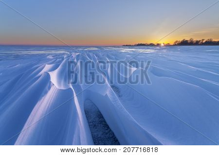 intricate patterns of snow / dawn winter landscape wildlife