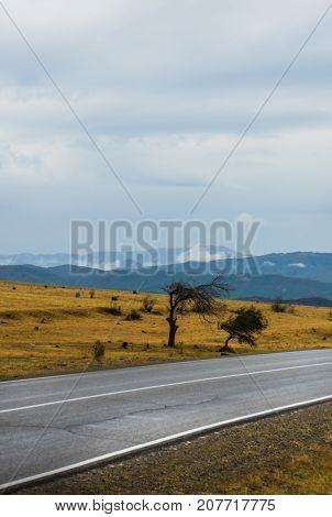 Autumnal Landscape Of Kakheti Region