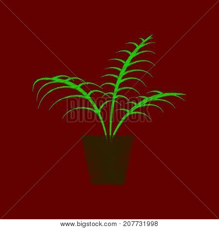 flat shading style icon Ficus houseplant flowerpot