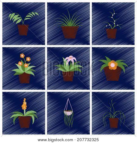 assembly flat shading style icons houseplants botanical