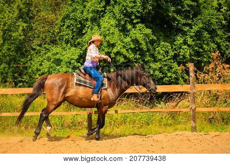 Taking care of animals horsemanship western competitions concept. Cowgirl doing horse riding on countryside meadow sunny day outside