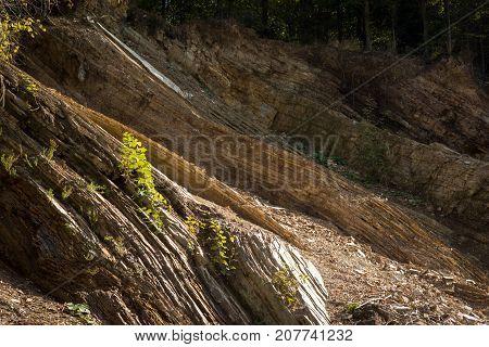 Carpathian Flysch