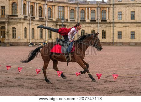 Gatchina St. Petersburg Russia - September 30 2017: Horse show of Cossacks on the parade ground of the Gatchina Palace. Young Cossack performs tricks on horseback.