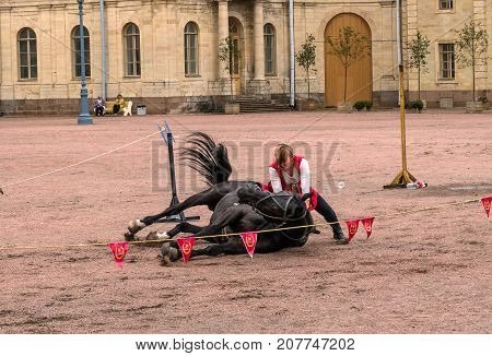 Gatchina St. Petersburg Russia - September 30 2017: Horse show of Cossacks on the parade ground of the Gatchina Palace. The young Cossack team put the horse on its side.