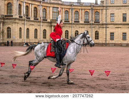 Gatchina St. Petersburg Russia - September 30 2017: Horse show of Cossacks on the parade ground of the Gatchina Palace. . Young Cossack performs tricks on horseback.