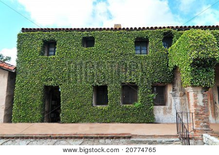 poster of A vegetation covered building with windows and a door all covered in green leafs and plants