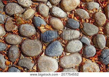 dry autumn leaves on cobblestone pavement. background and texture of old cobblestones. top view