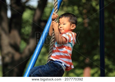 Japanese Boy Playing With Flying Fox (4 Years Old)