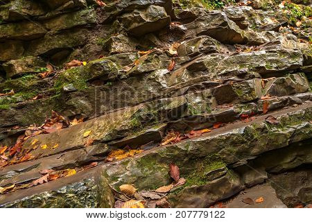 Awesome autumn landscape with misty forest and sedimental rock view