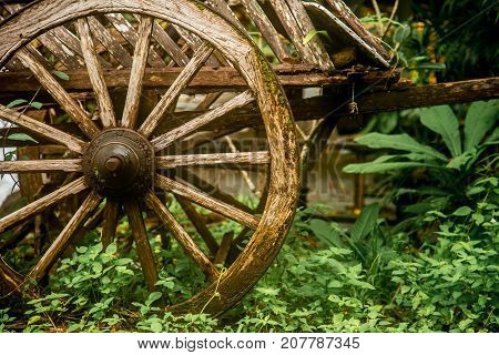 Old wooden wagon in the rain forest of Thailand closeup