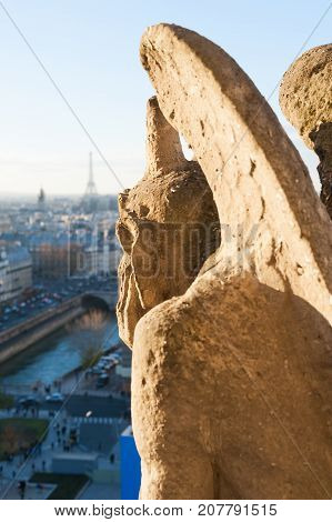 Gargoyle watching Paris skyline on a sunny day, France